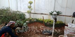 Jasa Bikin Taman Minimalis - Renovasi Taman - Pasang Rumput Taman