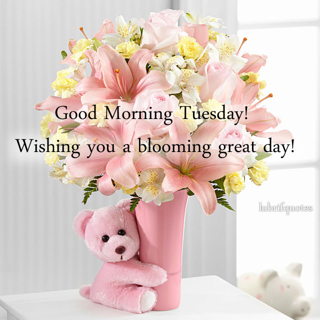 Tuesday Morning Quotes Tuesday Morning Quotes  Lubrifquotes