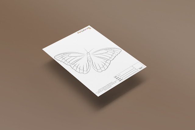 Free Printable Butterfly Template Coloriage Outline Blank Coloring Page pdf For Kids Pictures To Print Out Fun Colouring Pages Kindergarten Preschool Toddler sheet2