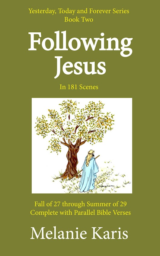 FOLLOWING JESUS: In 181 Scenes - Announcing Amazon Givaway