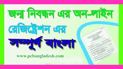 Online Birth Registration