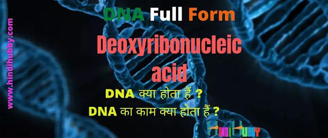 DNA Full Form in Hindi| DNA Full Form