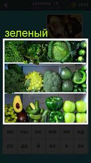 на полках в магазине лежат овощи и фрукты только зеленого цвета