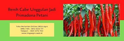 cabai, cabe merah very well, manfaat cabe, toko pertanian, jual benih cabe, lmga agro, online shop