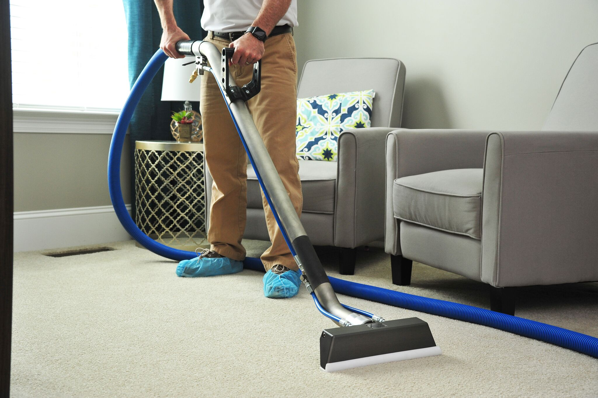 carpetsteam cleaning