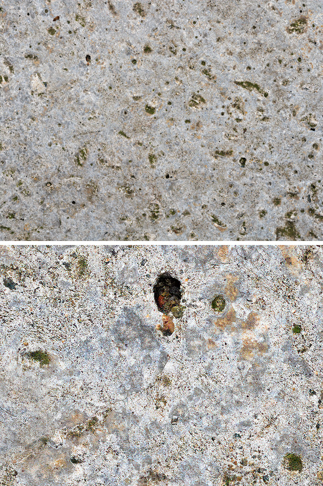 Stone_moss_growth_texture
