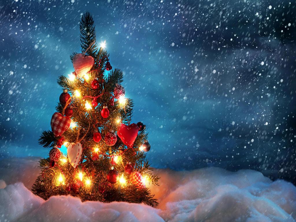 Email Forwards Fun!: Beautiful Winter Christmas Trees