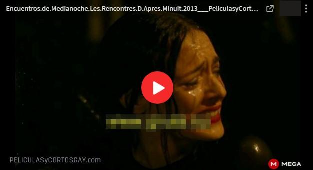 CLIC PARA VER VIDEO Encuentros de Medianoche - PELICULA GAY- Francia - 2013