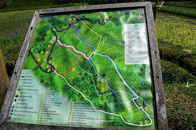 Peta panduan menyusuri Jatiluwih Rice Terrace Bali