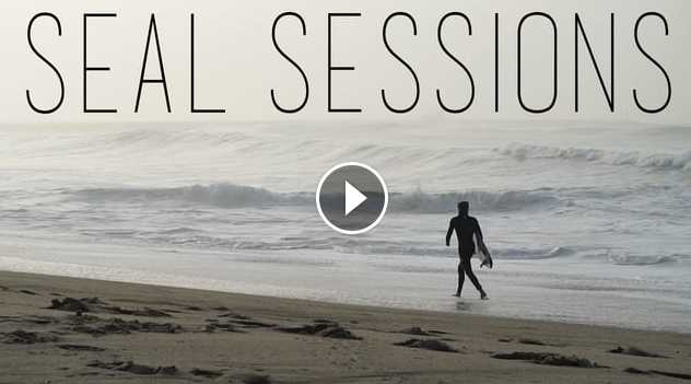 Seal Sessions January 2016