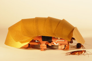 Kecoak itu yakni serangga yang biasanya dikatakan sebagai hama dan pengganggu di kalangan Hebat!, Robot Kecoak Makara Super Hero di masa depan