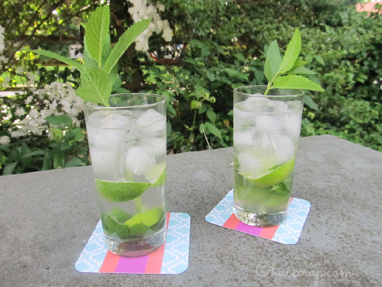 Mojitos summer drink