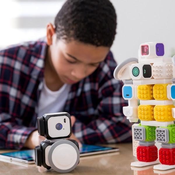 Mengajari anak coding dan membuat robot AI sendiri dengan Cubroid Artibo AI Robot