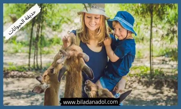 أفضل 10 أماكن السياحة في ازمير حديقة الحيوانات