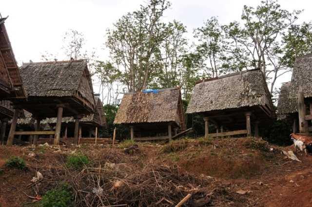 Ingin Jadi Desa Wisata, Seluruh Warga Harus Paham Konsepnya