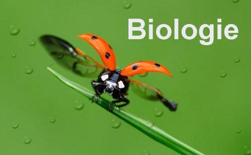 biology biologie. Black Bedroom Furniture Sets. Home Design Ideas