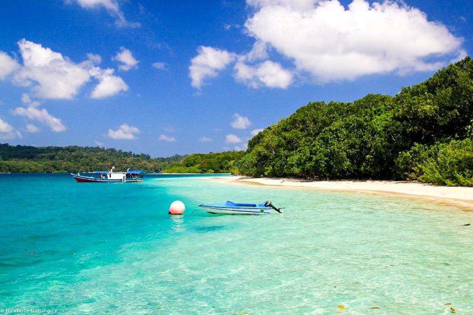 Wisata Pulau Peucang Banten