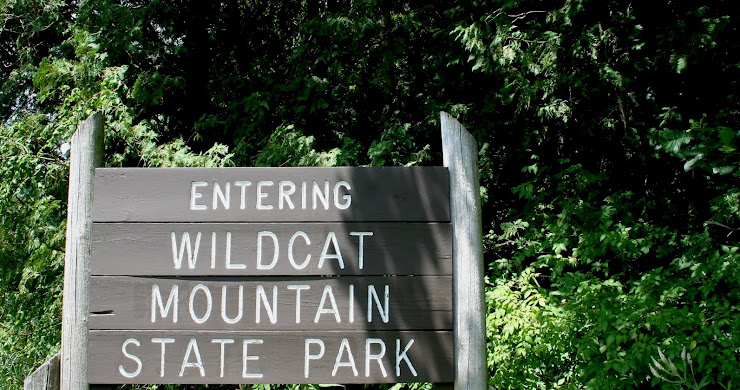 Campsite Pictures: Wildcat Mountain State Park