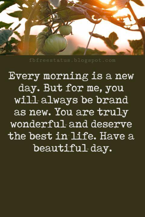 Sweet Good Morning Texts, Every morning is a new day. But for me, you will always be brand as new. You are truly wonderful and deserve the best in life. Have a beautiful day.
