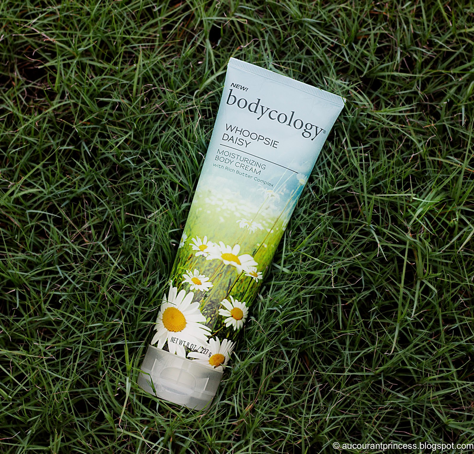 bodycology Moisturizing Body Cream with Rich Butter Complex in Whoopsie Daisy Product Review