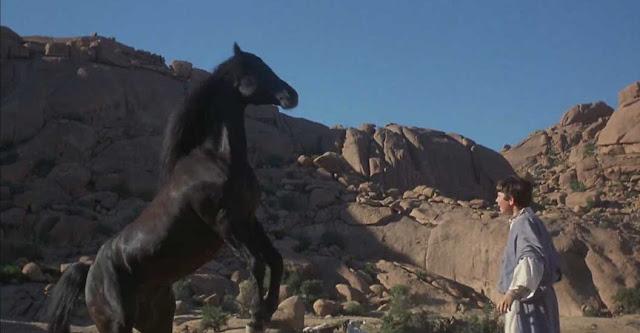 أفلام-عالمية-مبهرة-جرت-أحداثها-على-أراضي-عربية-The-Black-Stallion-Returns