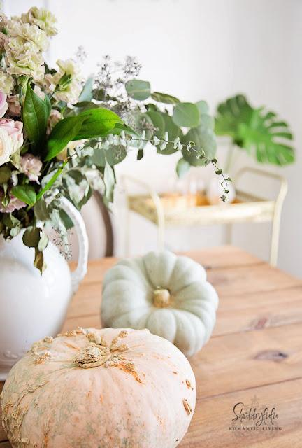 pink heirloom pumpkins