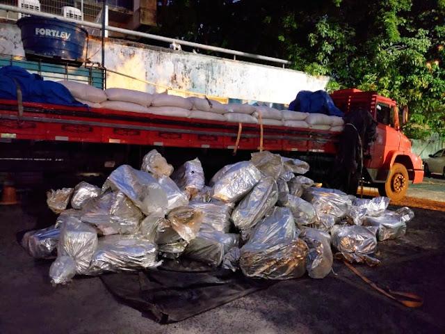 Polícia Federal apreende 1,5 tonelada de maconha em Pernambuco