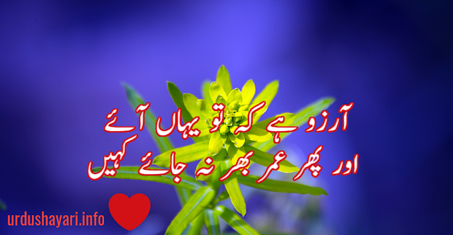 2 lines Aarzoo shayari in urdu by Nasir kazmi - two line poetry for romance and love