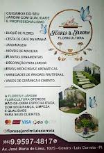 Flores & Jardim em Luis Correia