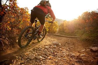 Bicicleta en montaña