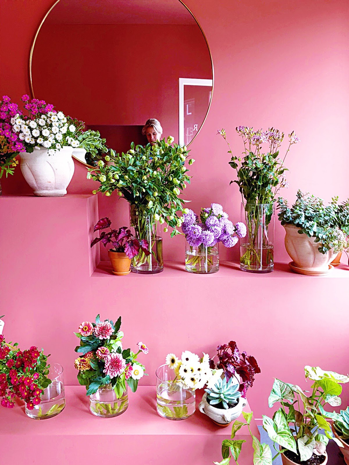 Rincón rosa y flores de película. Parte 2