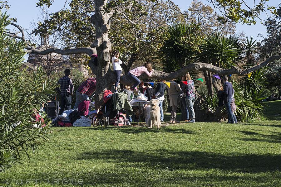 piknik puistossa