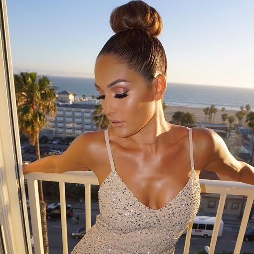 Nikki Bella Says Cyst On Her Brain Is Benign, Wanted To Be Part Of WWE Women's Tag Team Division