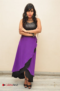 Telugu Actress Rachana Smith Stills at Money is Honey Audio Release  0043.jpg