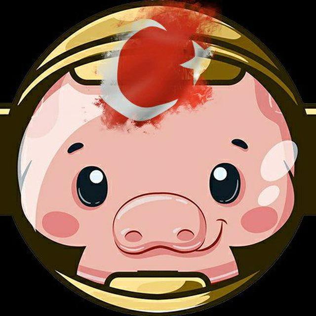 Pig Token Nedir? Pig Token Nasıl Alınır? Pancakeswap ile Pig Token Satın Almak!