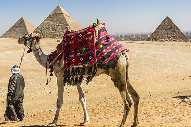 Египетская одиссея