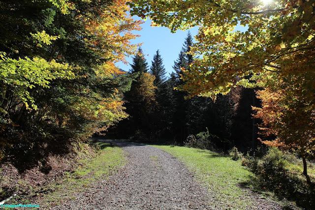 Pirineu Aragonès, Osca, Valle de Hecho, Val d'Echo, colors de tardor, senderisme