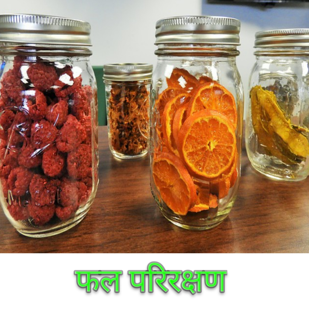 फल परिरक्षण Fruit Preservation