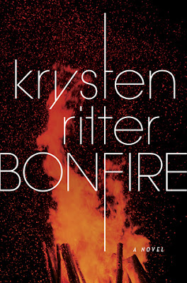 https://www.goodreads.com/book/show/33876540-bonfire