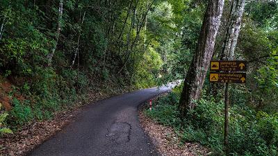 Doi Pui Peak