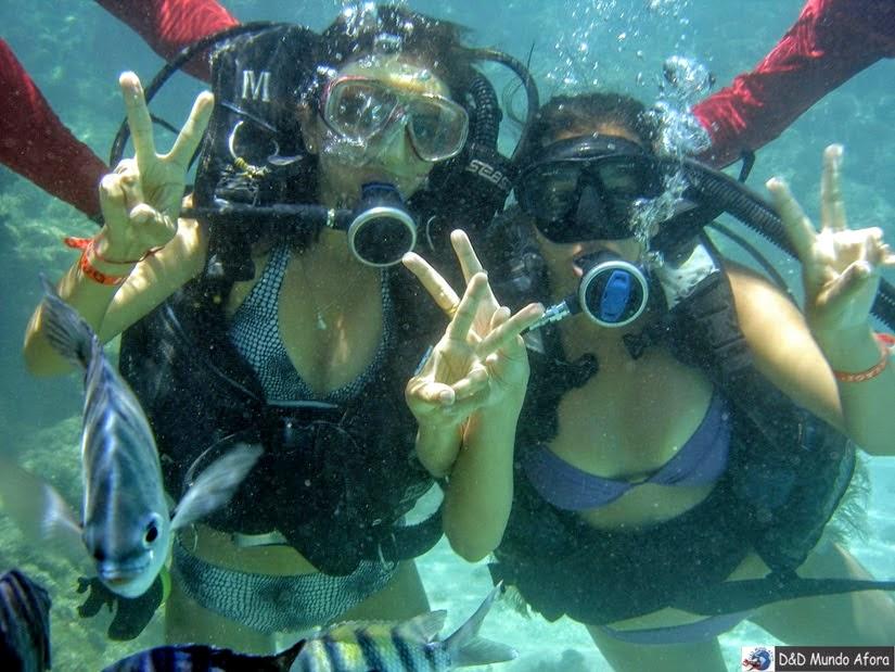 Mergulho com cilindro em Maragogi - Nordeste - Roteiro de 9 dias