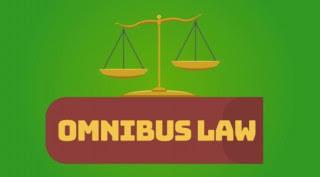 Pakar Hukum UI: Omnibus Law Serangkaian Perbaikan Regulasi Perizinan