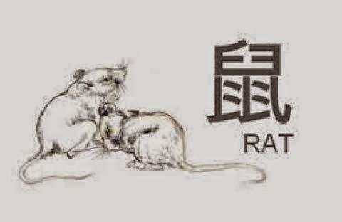 Ramalan Shio Tikus Hari Ini 2017