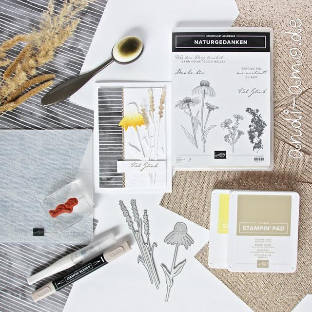 Karten basteln mit Stampin Up DIY selbermachen