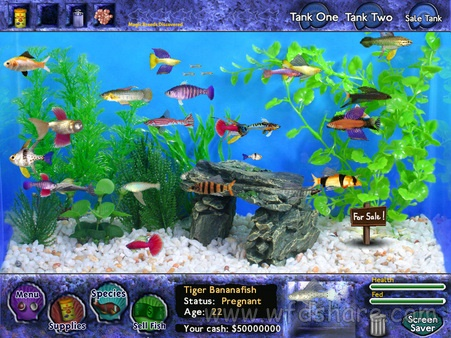 Fish tycoon full portable for Fish tycoon 2 guide