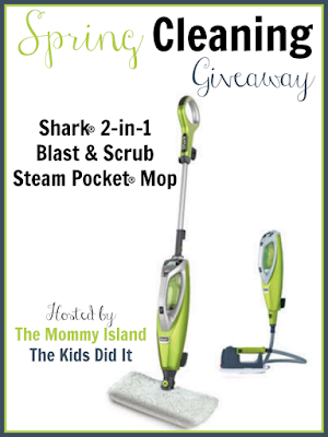 What A Great Prize This Would Be Great For Spring Cleaning