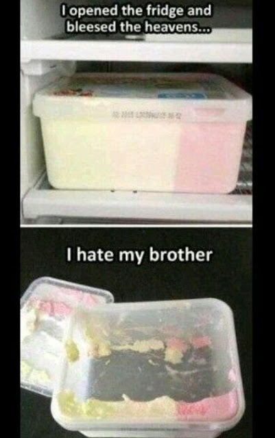 april fools day, april fools ice cream, ice cream prank, ice cream joke, i hate my brother