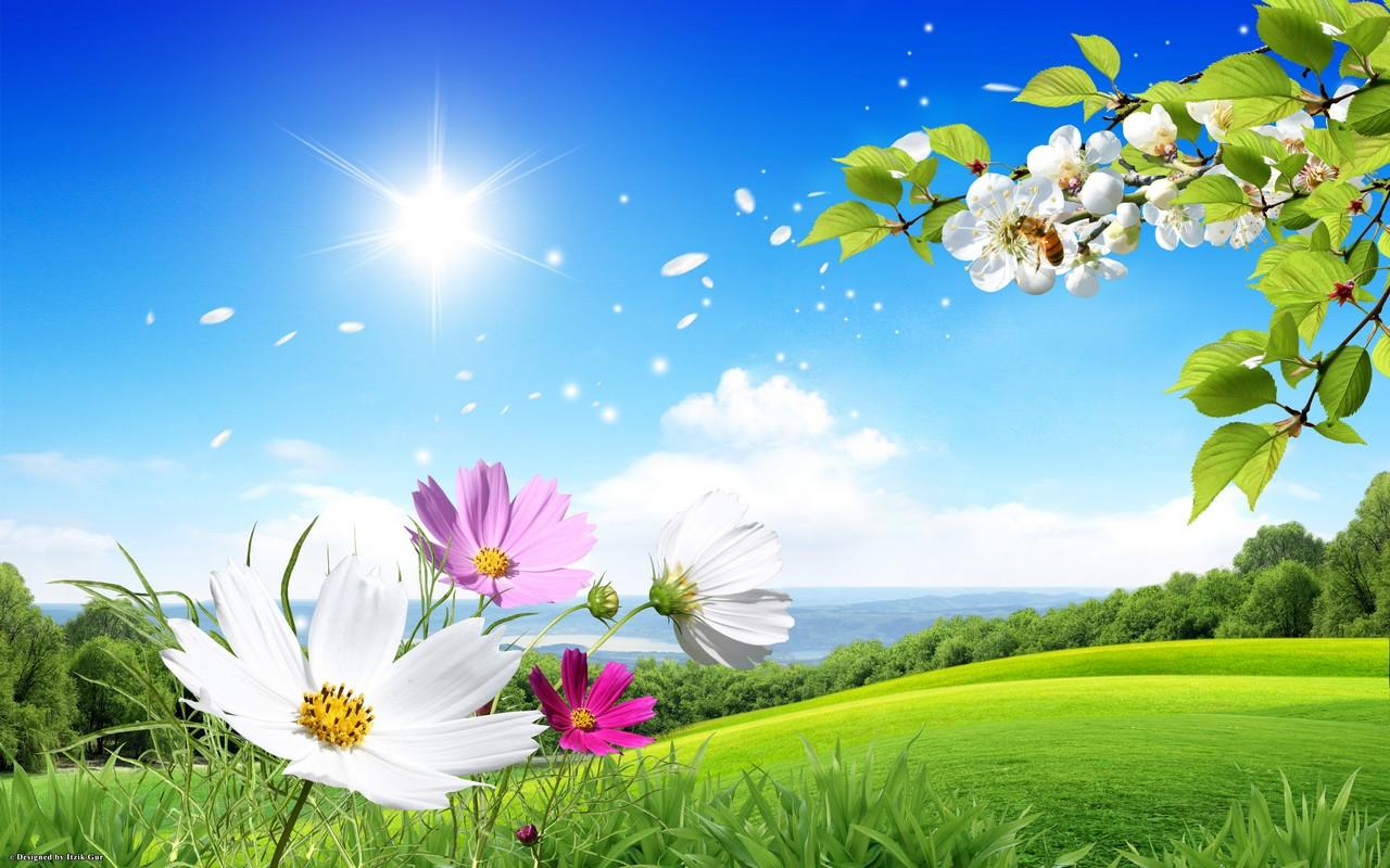 Fond ecran printemps fleurs - Fonds d'écran HD