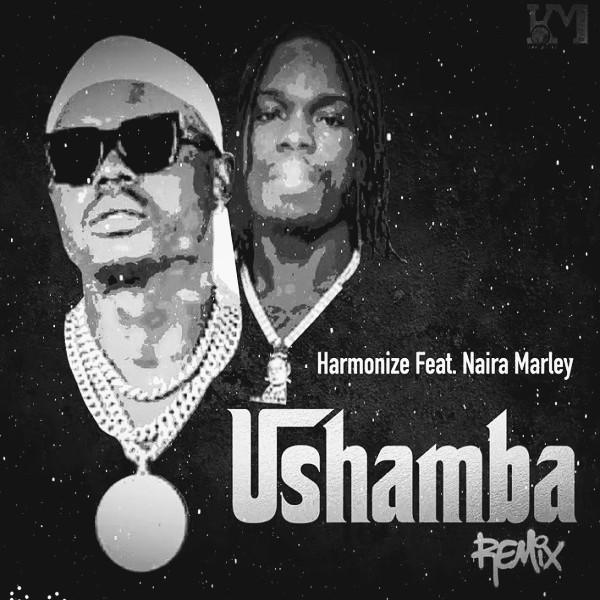 Harmonize_ft_Naira_Marley_Ushamba_Remix-mp3