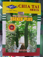 jual benih gambas, benih f1 esenza plus, cap kapal terbang, benih terbaru, toko pertanian, lmga agro